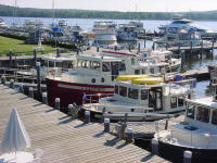 Tugs docked at Essex Island Marina
